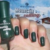 grün (2)