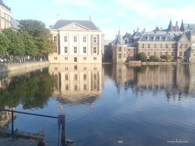 den haag (+amsterdam) (15)