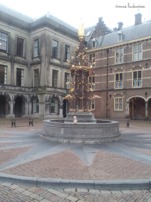 den haag (+amsterdam) (30)