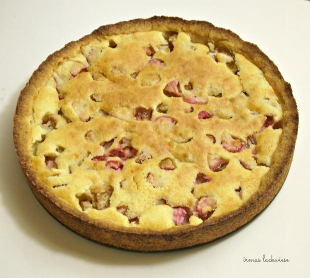 rhabarber kuchen (1)