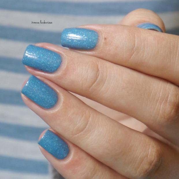 blue butterfly (10)