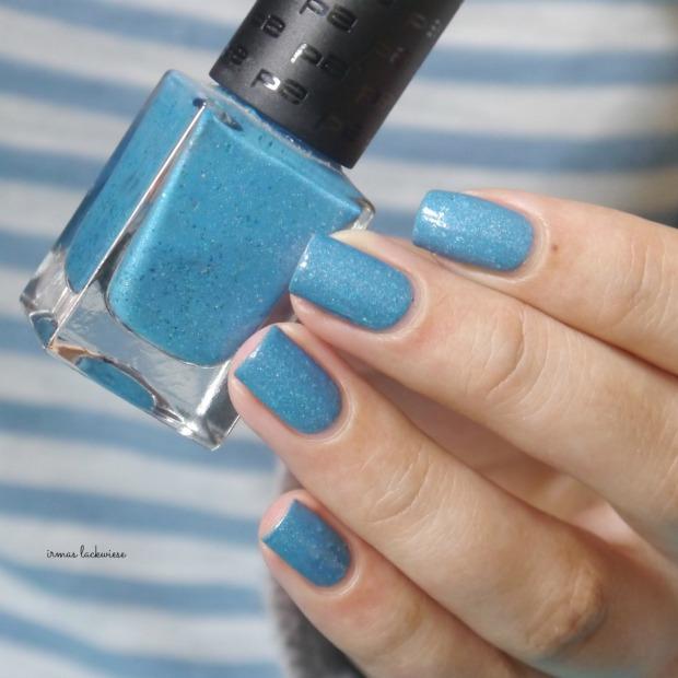 blue butterfly (6)