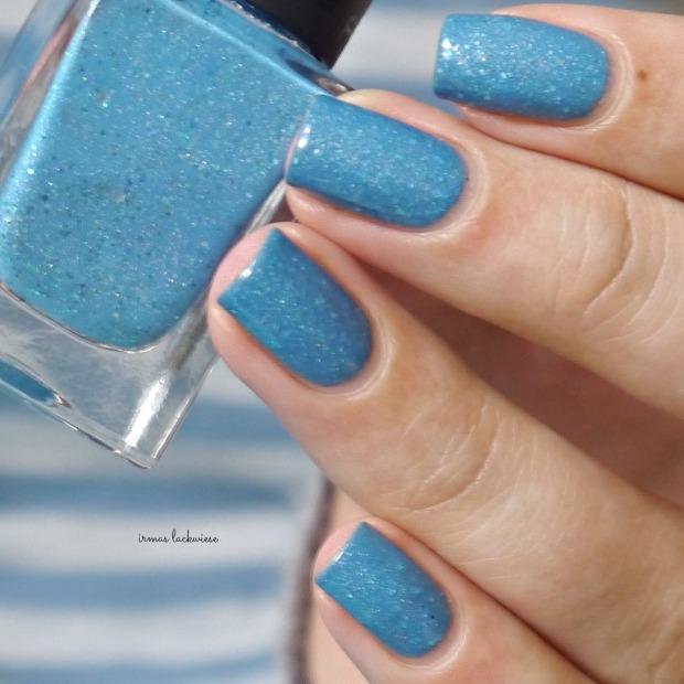 blue butterfly (8)