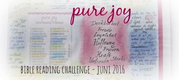 pure joy bible reading challenge (1)