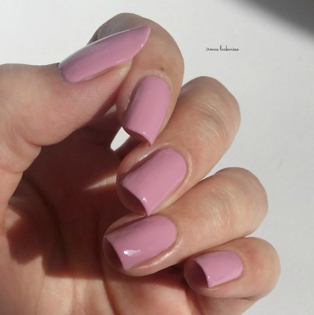 dusty pink + gradient (3)