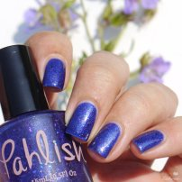 pahlish seven swans a swimming (4)